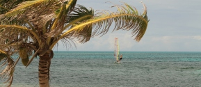 belize-windsurf_p