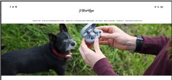 JBird Runs blog